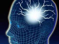 cervello, corpo umano, brain, malattie degenerative