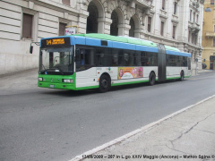 autobus, trasporto pubblico locale ad Ancona