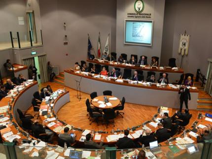 L'assemblea legislativa regionale delle Marche 2010-2015