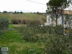 Il luogo dell'incidente agricolo a Sant'Angelo di Senigallia