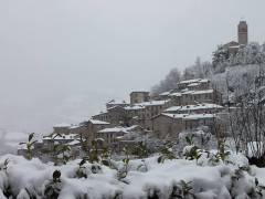 Neve a Montefortino