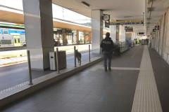 Polizia ferroviaria, Polfer, stazione ferroviaria, treni