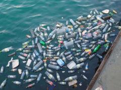 Inquinamento delle acque marine