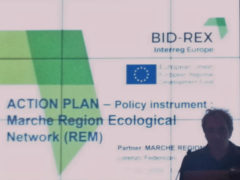 Progetto Interreg Bid Rex a Lubiana