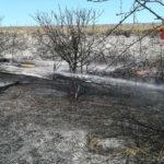 A fuoco le sterpaglie vicino ai binari