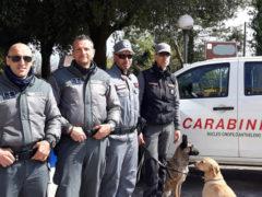 Agenti della Polizia Provinciale e dei Carabinieri Forestali del Nucleo Cinofilo Antiveleno