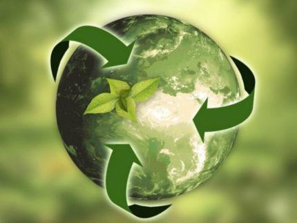 Ecologia, ambiente