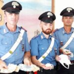 Arresti per spaccio a Fano